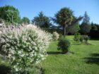 Gîte Le puits des Lucques Dordogne Perigord jardin