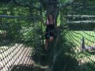 MONKEY'S FOREST parc accrobranche