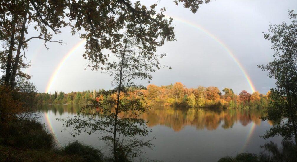 L'étang de Vivale